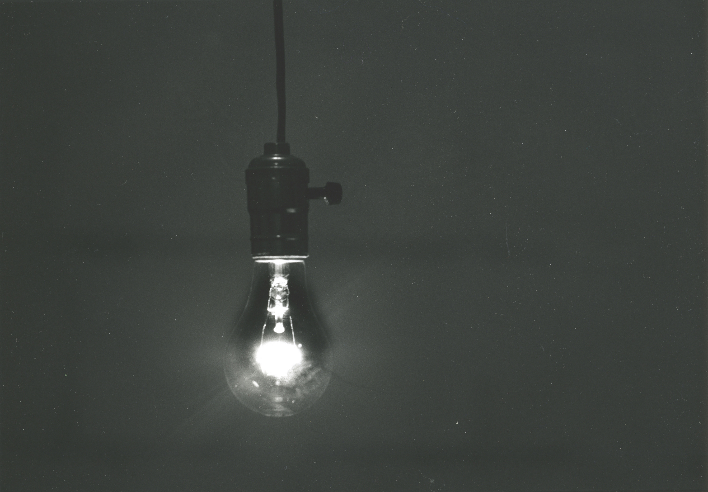 Regular-Bulb-BCSPhoto
