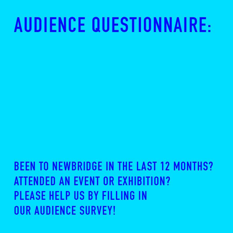 audience-questionnaire