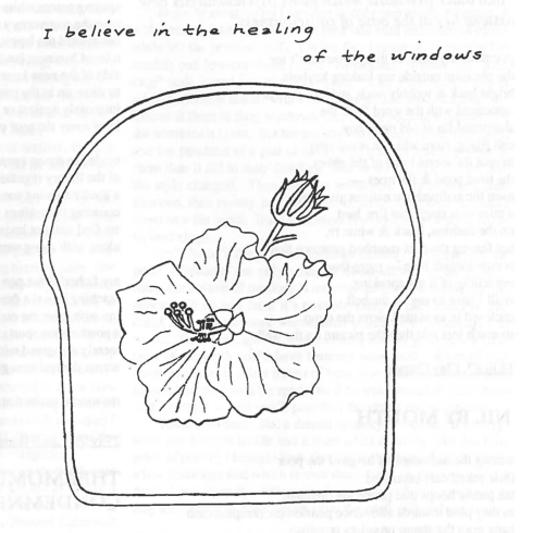 Black line drawing and writing on a white background saying 'I believe in the healing of the windows'. The drawing is of a lily in a curved line boarder.